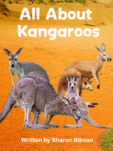 All About Kangaroos